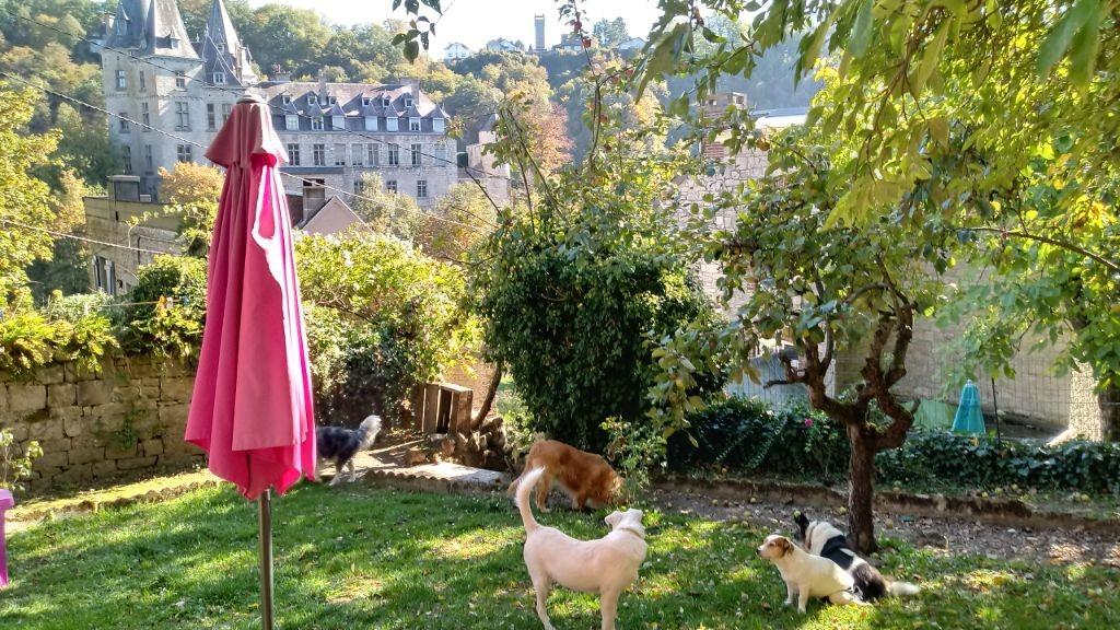 Romantische cottage DURBUY geweldig uitzicht omh.tuin honden=ok